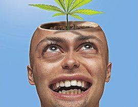 cannabis nella cefalea emicrania