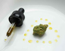 Estrazione cannabinoidi