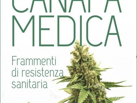 storie canapa medica