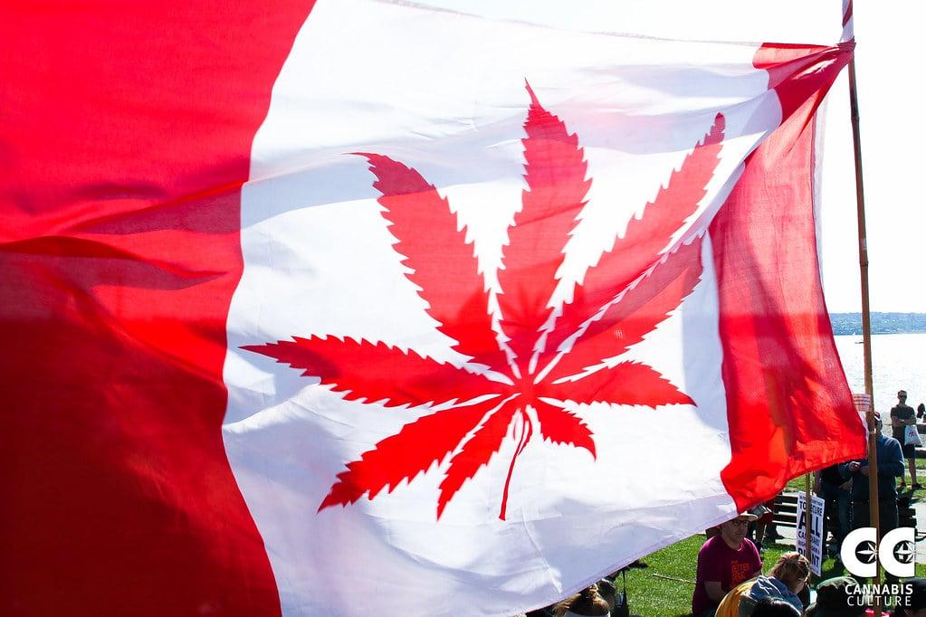 sistema cannabis terapeutica canadese